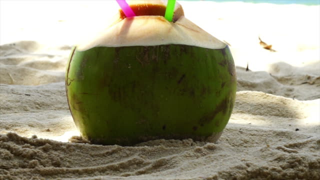 coconut on the beach patong - south america travel stock videos and b-roll footage