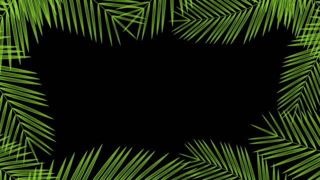 Coconut palm leaves transparent frame moving by the wind looping and copy space animation 4K on black background with alpha channel video