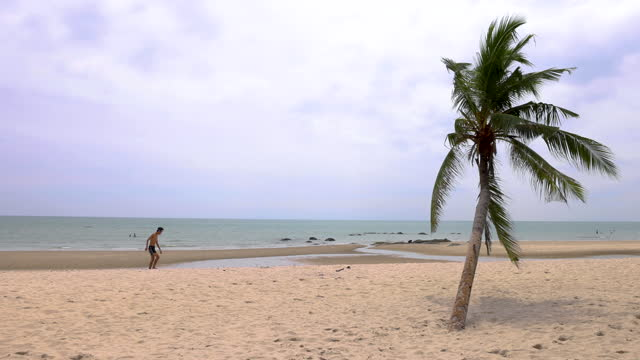 青い空、ホアヒン、プラチュワプキーリカーン、タイ、10月13,2020年10月13日と美しいビーチでココナッツの木。 - サムイ島点の映像素材/bロール