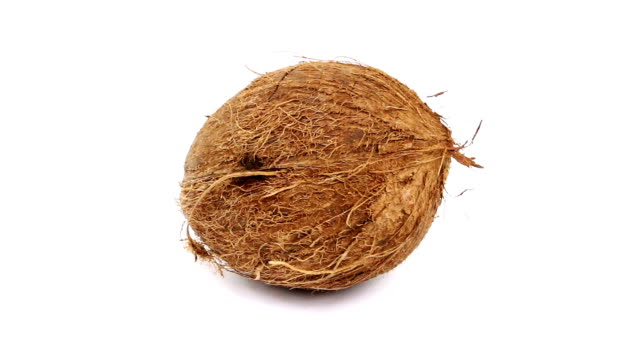 Coconut Coconut, tropical fruit filmed in full HD coconut stock videos & royalty-free footage