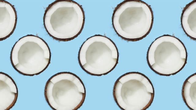 Coconuts rotating on blue background Coconut, spinning, turning, flat lay, blue background coconut palm tree stock videos & royalty-free footage