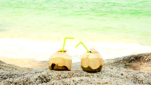 coconuts  - кокос стоковые видео и кадры b-roll