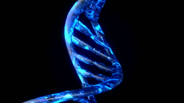 DNA code fly in. Abstract 3d polygonal wireframe DNA molecule helix spiral.