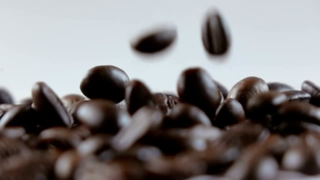 kaffeebohnen fallen auf weißen hintergrund - geröstete kaffeebohne stock-videos und b-roll-filmmaterial