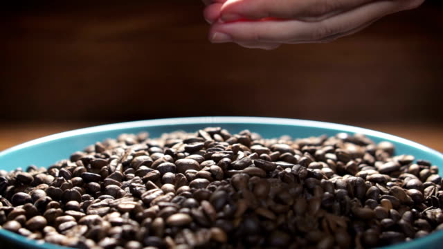 Coffee beans falling to ceramic plate from woman's hands, slow motion. video