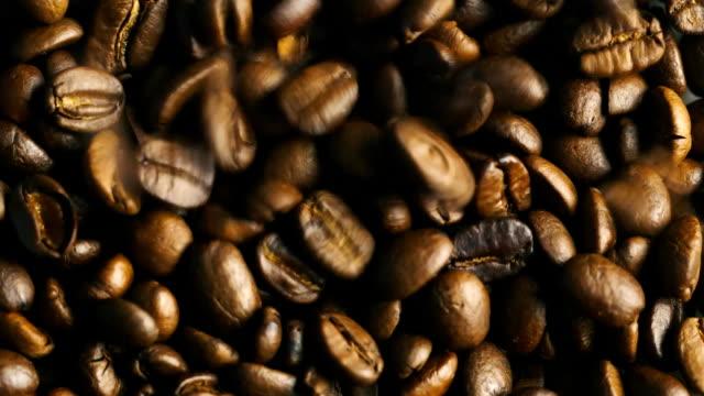Coffee beans of arabica video