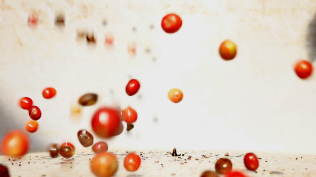 Coffee Berry falling in slow motion video