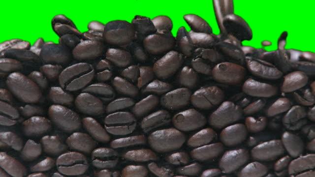 kaffee-füllung auf grüne - rohe kaffeebohne stock-videos und b-roll-filmmaterial