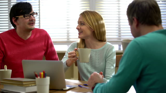 Coffee-break. An attractive young woman and two young men drinking coffee and talking in the office. video