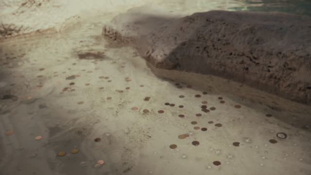Coins in the Trevi fountain of Rome video