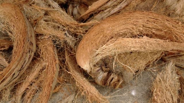 куар или кокосовое волокно. - кокос стоковые видео и кадры b-roll