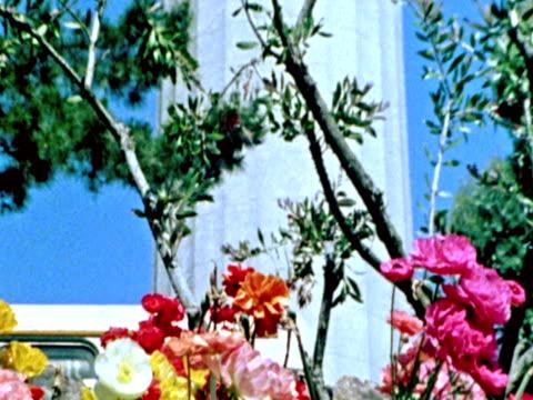coit tower -pal - fallus şeklinde stok videoları ve detay görüntü çekimi