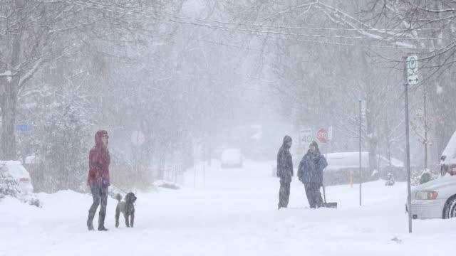 kall blizzard i ett bostadsområde - skyffel bildbanksvideor och videomaterial från bakom kulisserna