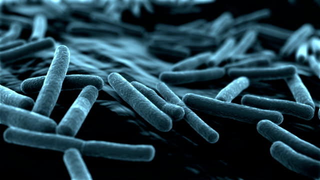 De E Coli Virus fondo azul - vídeo