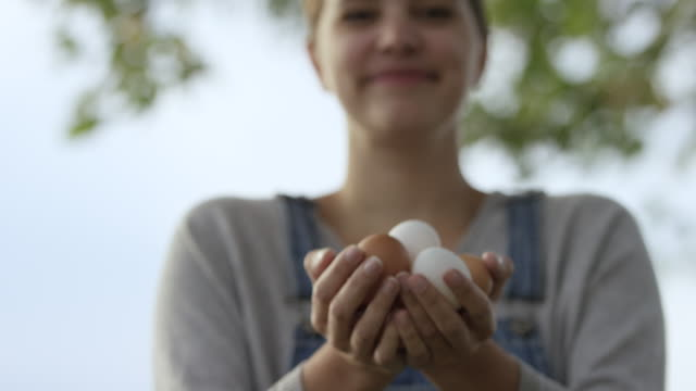 Collecting Eggs from the Chickens video