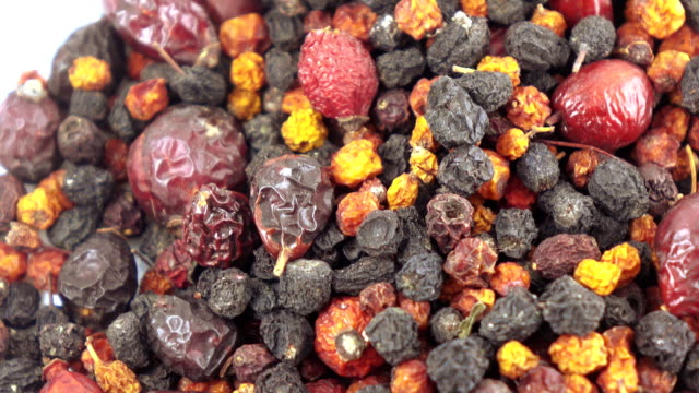 Collection of Carpathian berries