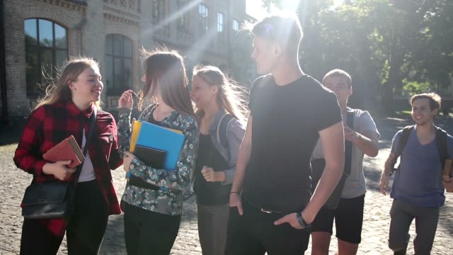 College students meeting on university campus video