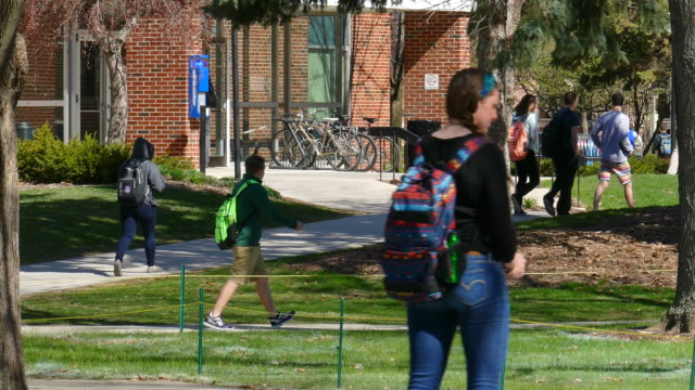 college students walking around busy campus on cool spring day - student stock videos and b-roll footage