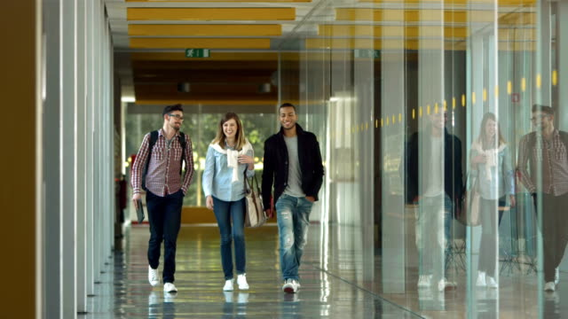 SLO MO DS College Students Walking In The Corridor HD1080p: SLOW MOTION DOLLY shot of a group of young students walking down the corridor of the college. student stock videos & royalty-free footage