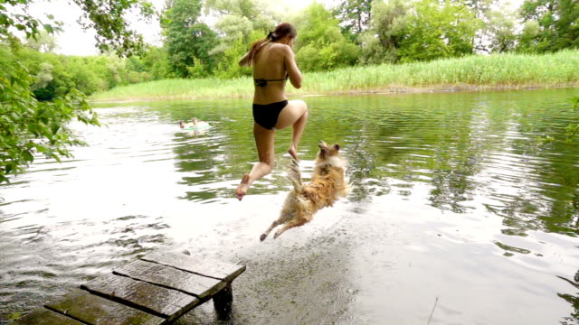 Collie dog with young girl dive into the river video