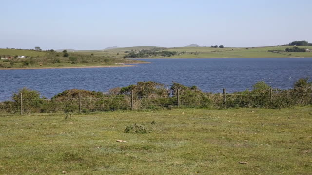 Colliford reservoir Bodmin Moor Cornwall England UK video