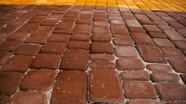 Colored Paving Stones in a Park in Motion video