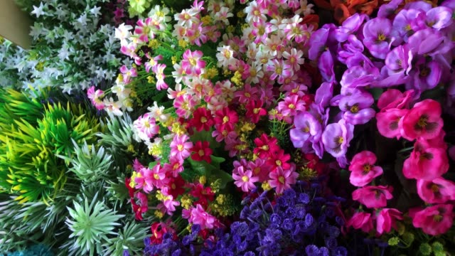 colorful abstract background of flowers - flowers стоковые видео и кадры b-roll