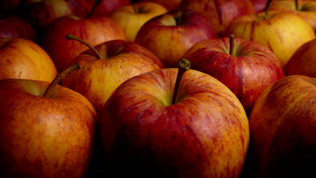 Colorful Apples Moving Shot