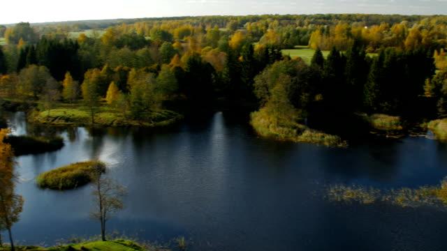 Bидео Красочный Осенний landscape.Nature фон