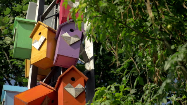 Colorful birdhouses in the park video