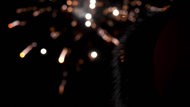 Colorful blurred firework lights on black sky background. Stock footage. Concept of New Year and Christmas, rear view of a woman in down jacket with fur hood looking at firework defocused round lights Colorful blurred firework lights on black sky background. Concept of New Year and Christmas, rear view of a woman in down jacket with fur hood looking at firework defocused round lights. petard stock videos & royalty-free footage