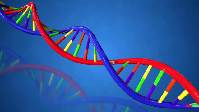 Colorful DNA structure Loopable full HD video