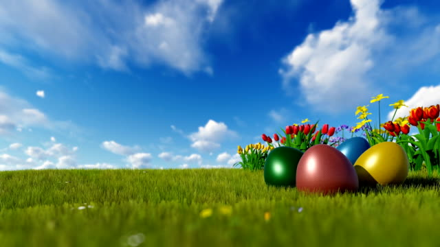 Bunte Ostereier auf der grünen Wiese mit Frühlingsblumen über blauen Himmel – Video