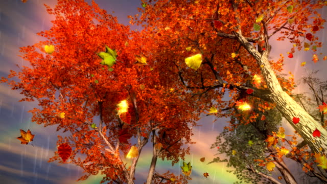 Colorful Fall Autumn Trees Falling Leaves Rain Storm Rainbow LOOP