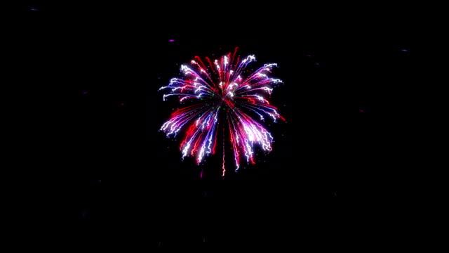 vídeos y material grabado en eventos de stock de coloridos fuegos artificiales explosión, fondo de vacaciones, luma matte adjunto - happy 4th of july