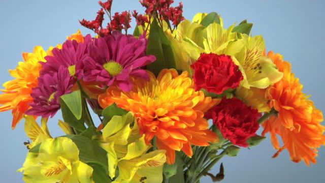Colorful flower arrangement video