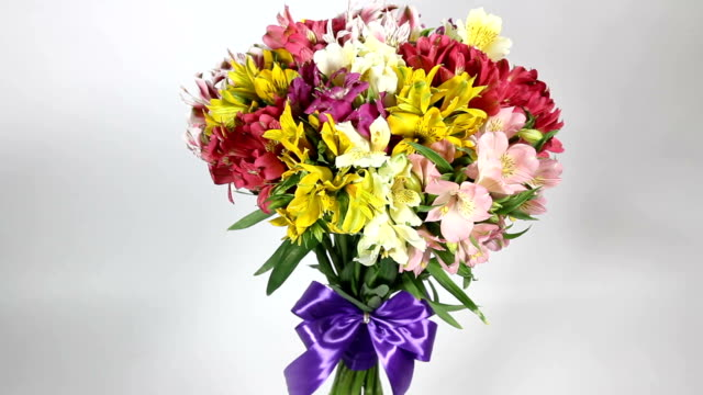 vídeos de stock, filmes e b-roll de buquê de flores coloridas de alstroemeria voltas - arméria