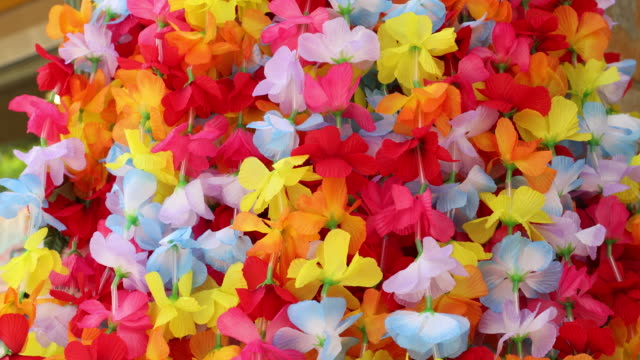 Colorful Hawaiian Lei Flower Necklaces For Sale in Honolulu Oahu Colorful Hawaiian Lei Flower Necklaces For Sale in Honolulu Oahu waikiki stock videos & royalty-free footage