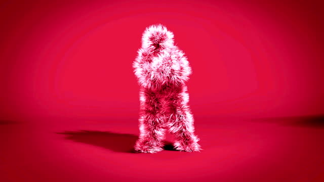 colorful monkey dancing gangnam style - lanuginoso video stock e b–roll