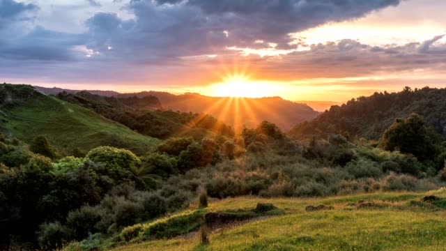 Colorful sunrise morning over beautiful green nature in New Zealand countryside landscape