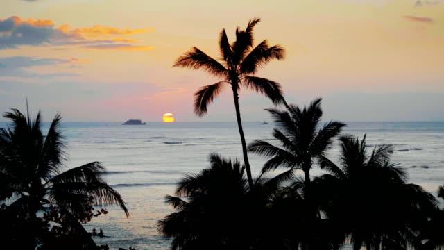 färgsprakande solnedgång i waikiki beach hawaii i 4k - idyllisk bildbanksvideor och videomaterial från bakom kulisserna
