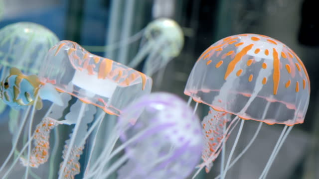 Colorful transparent children's play jellyfish swim in the water