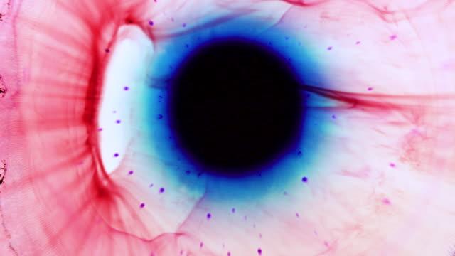vidéos et rushes de couleurs en mouvement - psychédélique