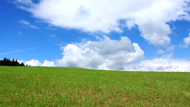 Colourful landscape Green meadow and blue sky with clouds grass area stock videos & royalty-free footage