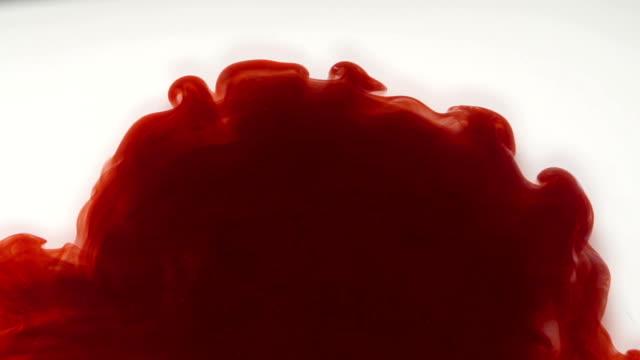 vidéos et rushes de encre rouge coloré dans l'eau sur fond blanc - sang