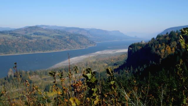 columbia river gorge - trillium stock videos & royalty-free footage