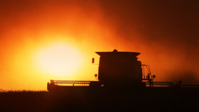 Combine at sunset video