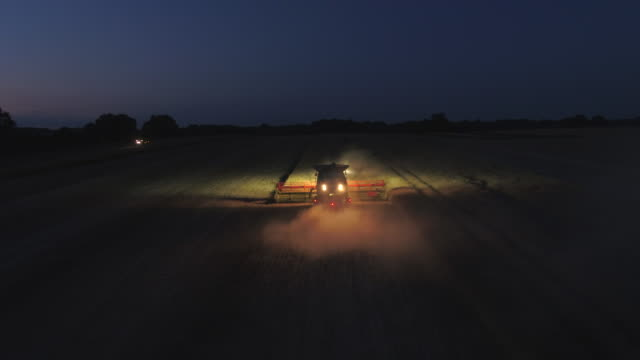 combine harvester at night during the harvest - colza video stock e b–roll