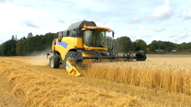 Combine harvester in field video