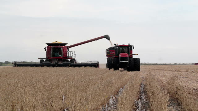 Combine Harvester Transferring Crop to Tractor Pulling Trailer video
